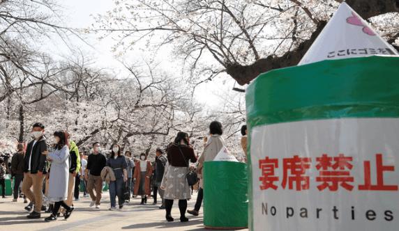 上野公園の桜が見える道、通行止めに 都「花見控えて」