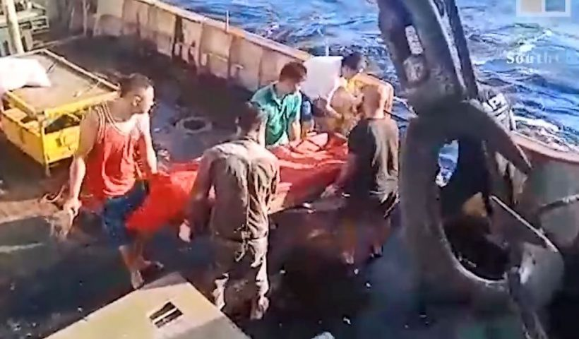 中国漁船がインドネシア人船員の遺体を海に投げ入れ